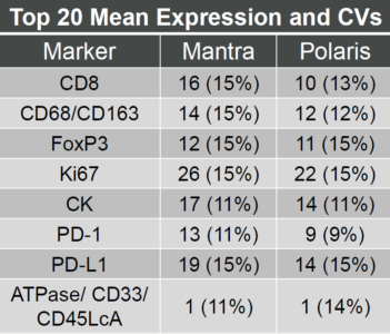Mantra-Polaris-concordance-CV-1